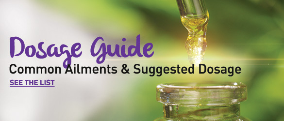 CBD Oil Dosage Guide