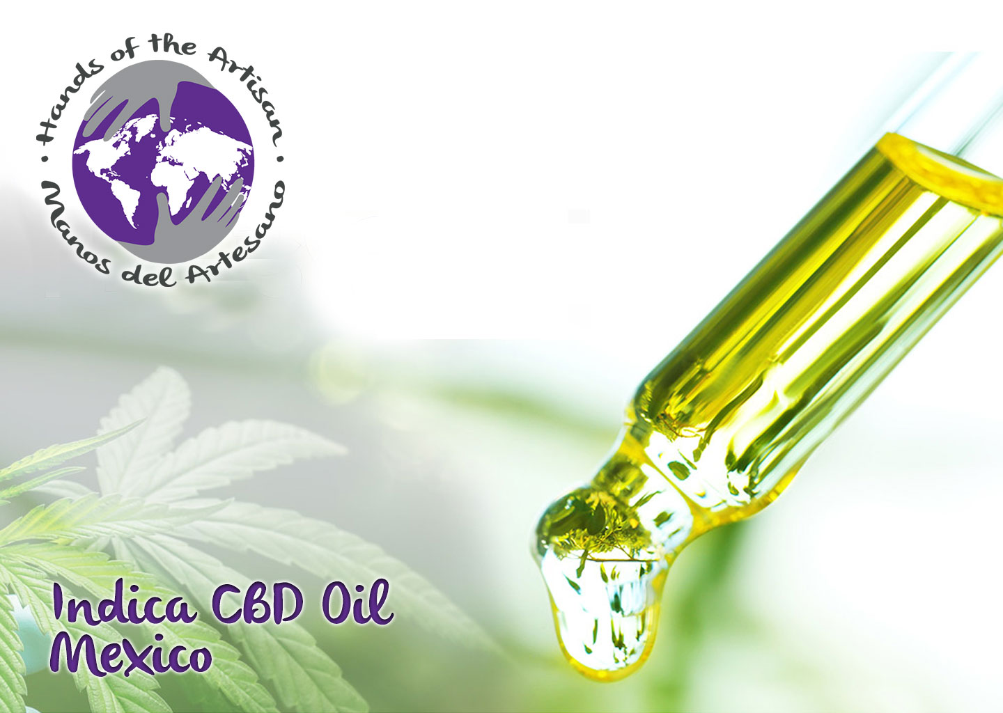 Indica CBD Oil Mexico